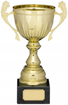 8inchGOLD PRESENTATION CUP T/113