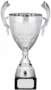 14.25inch CUP TROPHY SILVER C/86