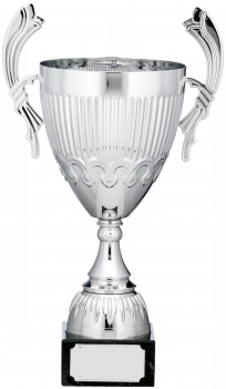 16.25inch CUP TROPHY SILVER C/86