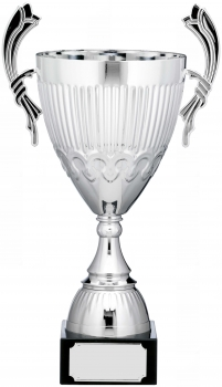 19.5inch CUP TROPHY SILVER C/86
