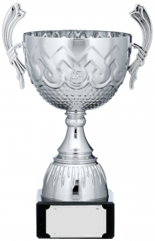 9.25inch SILVER CUP TROPHY C/88