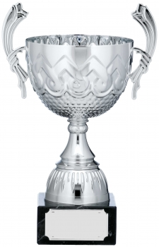 10inch SILVER CUP TROPHY C/88