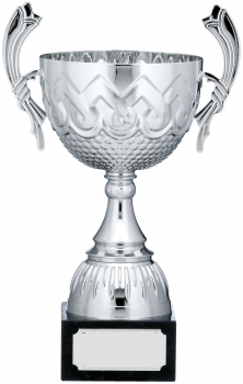 12inch SILVER CUP TROPHY C/88