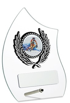 4.75inchGLASS AWARD