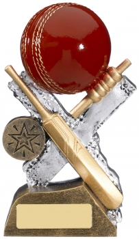 6inch EXTREME CRICKET RESIN AWARD