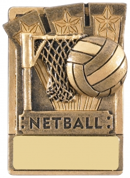 MINI MAGNETIC NETBALL TROPHY T/44/83    128/case    S112