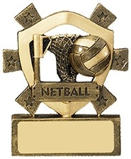 3 1/8inchNETBALL MINI SHIELD