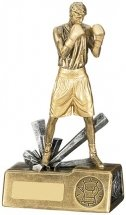 Boxing Male Figure Award