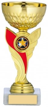 6.75inch GOLD & RED TROPHY