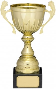 6.75InchGOLD PRESENTATION CUP T/113
