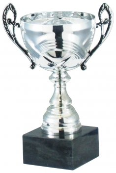 8.5inch CUP TROPHY SILVER C/86