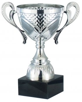 9.5inchCUP TROPHY SILVER C/88