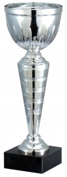 10inch CUP TROPHY SILVER C/90