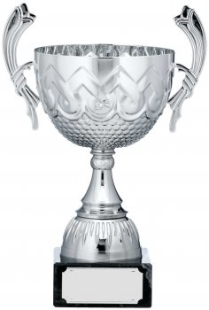 13.5inch SILVER CUP TROPHY C/88