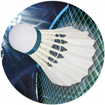 BADMINTON 1inchFLAT CENTRE