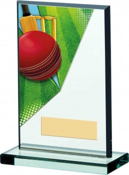 6inch CRICKET ACRYLIC GLASS AWARD