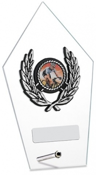 6.75inchGLASS PENTAGON AWARD