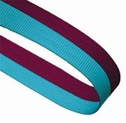 CLARET BLUE 22MM  RIBBON