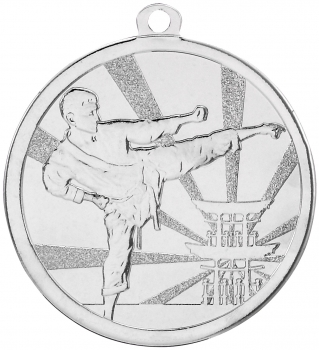 70MM SILVER MARTIAL ARTS MEDAL T/138