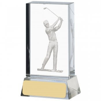 4inch GOLF ETCHED GLASS BLOCK