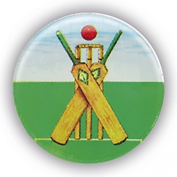 CRICKET THEME 1inchDOMED CENTRE