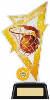 7.5inchBASKETBALL ACRYLIC AWARD