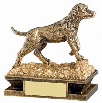 4.25inchGUNDOG AWARD