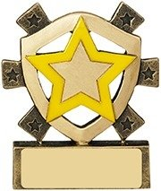 3 1/8inchYELLOW STAR MINI SHIELD