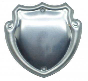 1.25inch CHROME STEEL TRIM SHIELD C/48 PACK 25