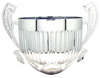 180MM SILVER CUP WITH HANDLES