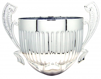 220MM SILVER CUP WITH HANDLES
